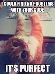 Cat Problems Meme - i could find no problems with your code it s purfect programmer