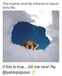 Best Meme Page - 25 best memes about heaven looks like heaven looks like memes