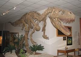 allosaurus roar s top twenty five american dinosaur museums