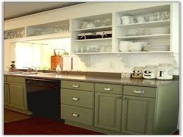 Kitchen Cabinets With No Doors Kitchen Kitchen Cabinet Without Doors On Kitchen No Cabinets 11