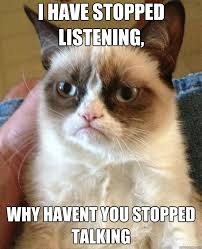 Talking Cat Meme - i have stopped listening why haven t you stopped talking grumpy