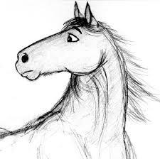 another horse cartoon sketch by sarahesen on deviantart