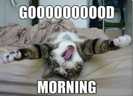 Finally Friday Meme - it s finally friday