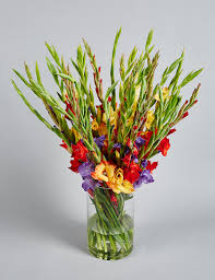 Photos Of Flowers Gladioli Abundance Bouquet M U0026s