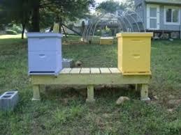 Backyard Beehive 35 Best Backyard Beekeeping Small Scale Images On Pinterest Bee