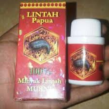 lintah oil super papua tlp 083843274388 28b4c57a 98subs forum