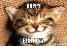 Cat Birthday Memes - farewell letter from meme birthdays and cat