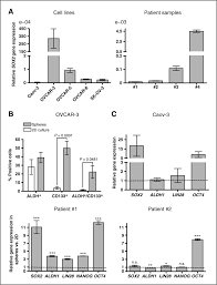 sox2 expression associates with stem cell state in human ovarian