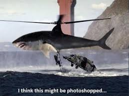 Shark Attack Meme - great white shark attack helicopter