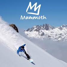 Costco Six Flags Tickets Mammoth Mountain Five 1 Day Ski Lift Ticket Evouchers California