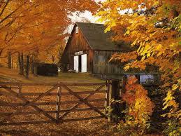 free thanksgiving pics free autumn desktop wallpaper pictures wallpapersafari