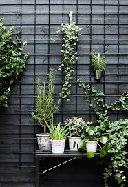 garden wall plants vertical gardening ideas pinterest home outdoor decoration