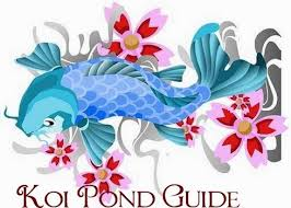 koi fish meaning is fortune or luck they also are associated