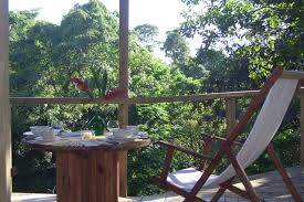 Backyard Zip Line Without Trees by Costa Rica 2017 The Top 20 Treehouses For Rent In Costa Rica