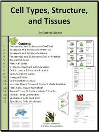 cells and tissues worksheet worksheets