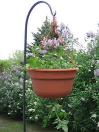 how to make an upside down tomato planter curbly