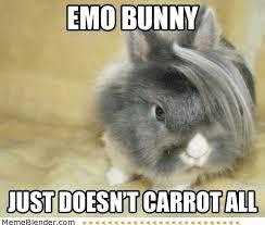 Chocolate Bunny Meme - rabbit ramblings bunny monday meme day emo