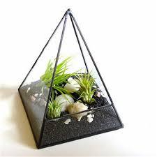 aliexpress com buy air plant terrarium glass pyramid terrarium