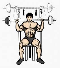 Flat Bench Barbell Press The Top 7 Muscle Building Exercises Fitness