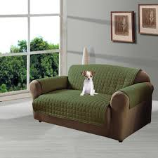 Green Leather Sofa by Furniture Gallant Sage Green Leather Sofa Comfortably Occupied
