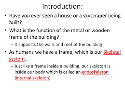 What Is An A Frame House Ppt Human Biology Chapter 20 Support And Movement Powerpoint