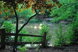 Botanical Gardens South Carolina Sc Botanical Gardens Clemson Sc Out And About Pinterest