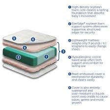 How To Clean A Crib Mattress by Sealy Soybean Everedge Crib Mattress Sealy Babies