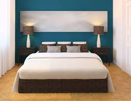 bedroom light blue wall curtain plants in pot dark orange sofa