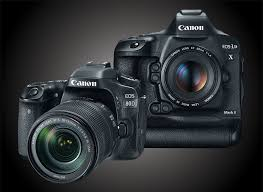 best digital camera for action shots and low light best dslr cameras for wildlife photography outdoor photographer