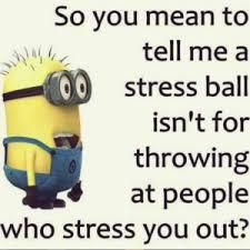 Happy Tuesday Meme - 20 happy tuesday meme tuesday meme positive