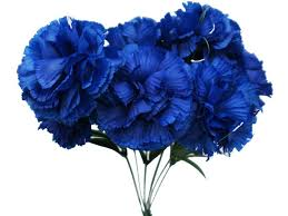 blue carnations blue carnation blue carnations for bouquet one of the
