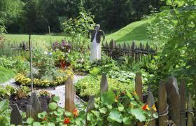 landscape ideas backyard fence ideas