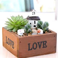compare prices on flower planter boxes online shopping buy low