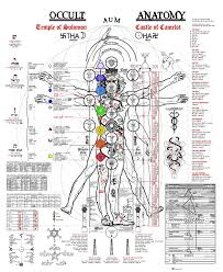 Human Body Anatomy Pics Beautiful Images Of The Occult Anatomy And Subtle Energy Of The