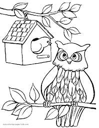 owl color animal coloring pages color plate coloring sheet
