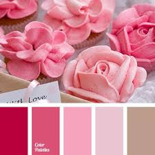 complementary colors pink hot pink complementary color home design architecture