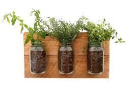 indoor herb gardens u2013 satuska co