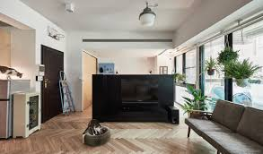 cat owner u0027s cramped apartment gets room to breathe living room