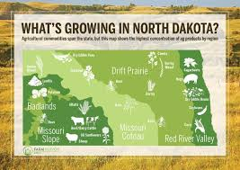 Map North Dakota North Dakota Agriculture Map What U0027s Growing On Farms In Each