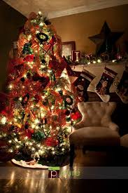 most popular christmas tree lights 411 best christmas poses and photo ideas images on pinterest merry