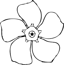 eletragesi daffodil clipart black and white images