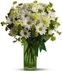 flower delivery columbus ohio a st s day zies a st patricks day delight columbus