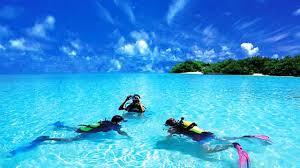25 best places to go scuba diving