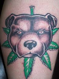 pit bull tattoos and meanings