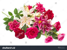 beautiful bouquet of flowers beautiful bouquet roses lilies isolated on stock photo 464953475