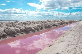 Pink Lake Las Coloradas The Wonderful Pink Lakes Of Mexico Green And