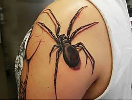 3d color spider tattoo photo pictures images sketches