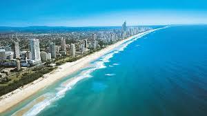 Gold Coast 1 Bedroom Apartments One Bedroom Apartments Gold Coast 1 Bedroom Gold Coast