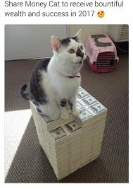 Success Cat Meme - share money cat to receive bountiful wealth and success in 2017