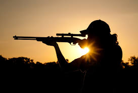 Export Power Of Attorney Form by Aes Filing For The Export Of Firearms Hunting Trophy Com
